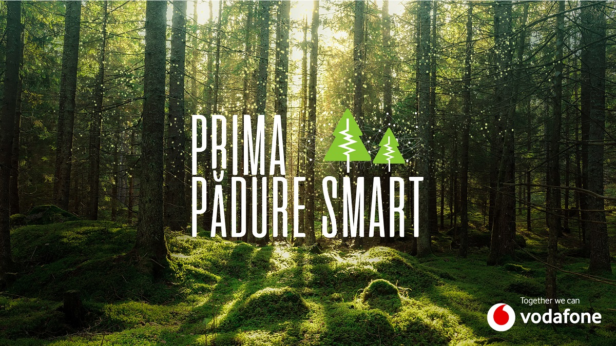Vodafone powers the first smart forest in Romania to prevent illegal logging